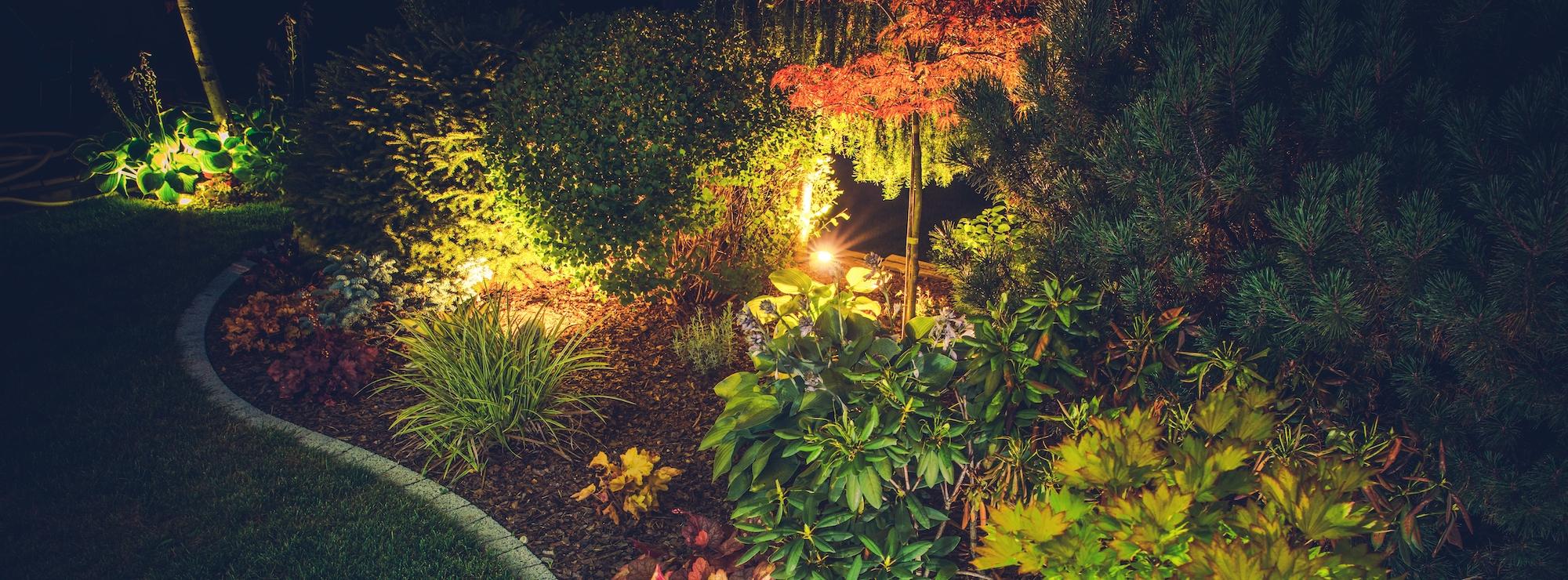 LED Lights In Gardens